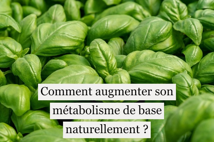 Comment augmenter son métabolisme de base naturellement ?